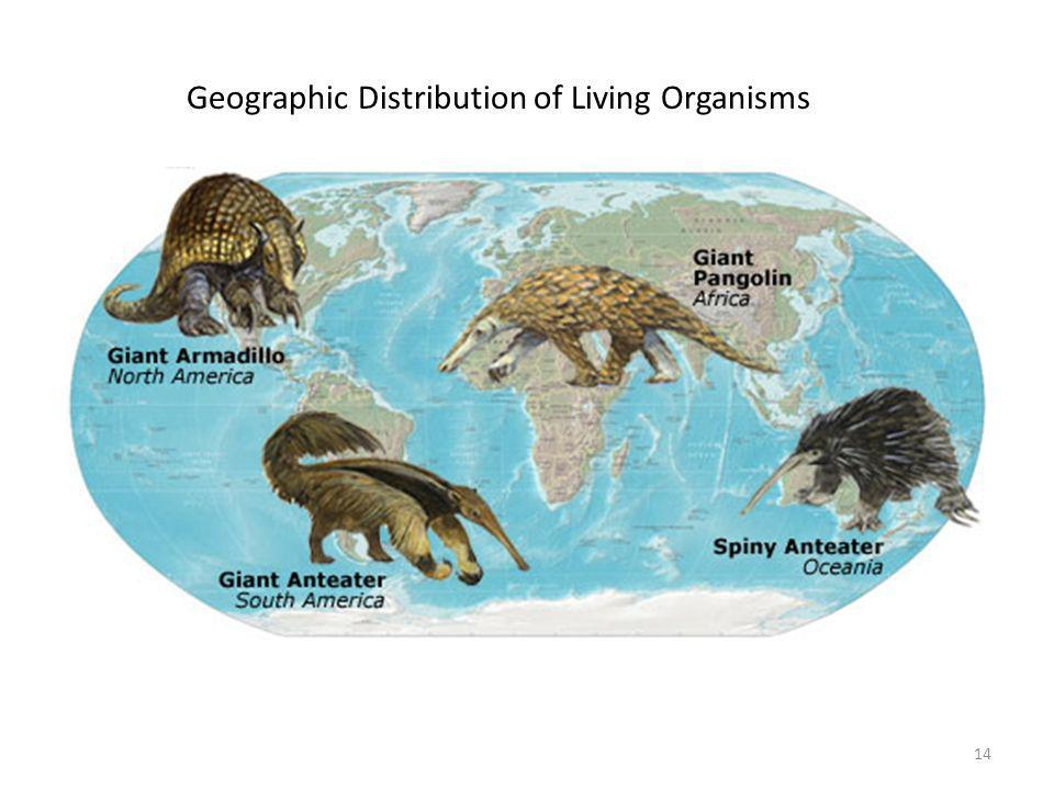 Geographic Distribution of Living Organisms