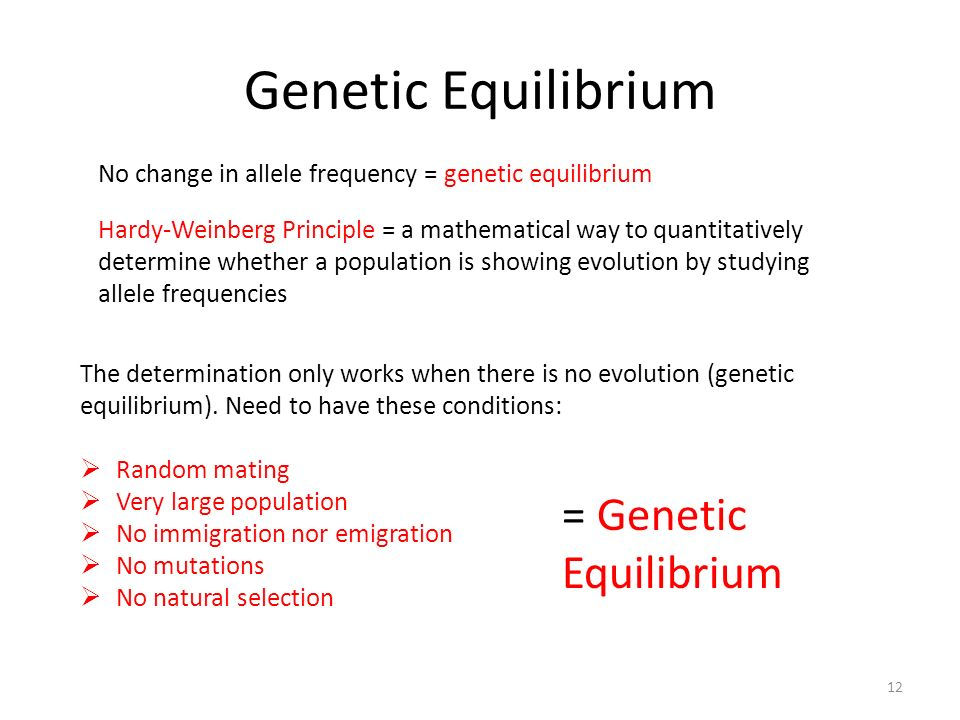 Genetic Equilibrium = Genetic Equilibrium