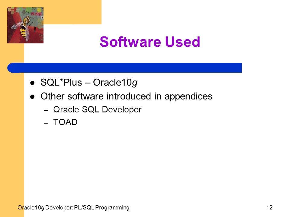 sql plus software