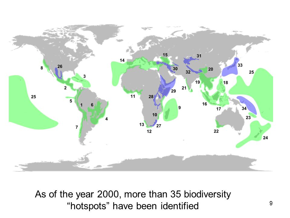 As of the year 2000, more than 35 biodiversity hotspots have been identified