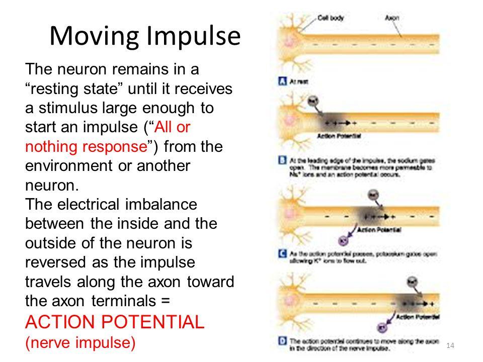 Moving Impulse