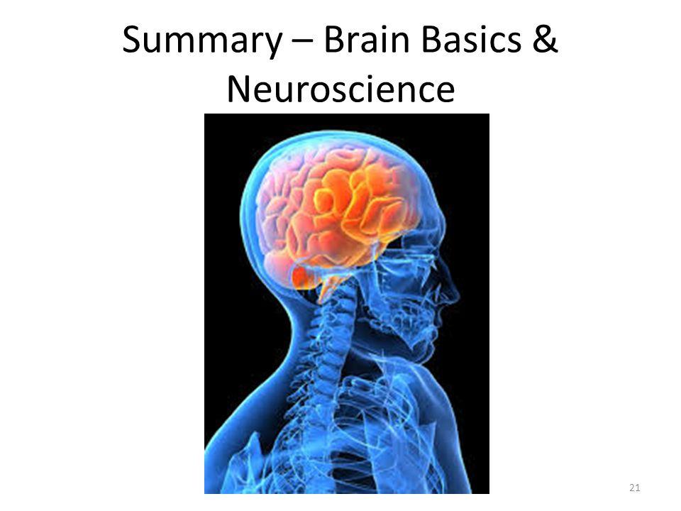 Summary – Brain Basics & Neuroscience