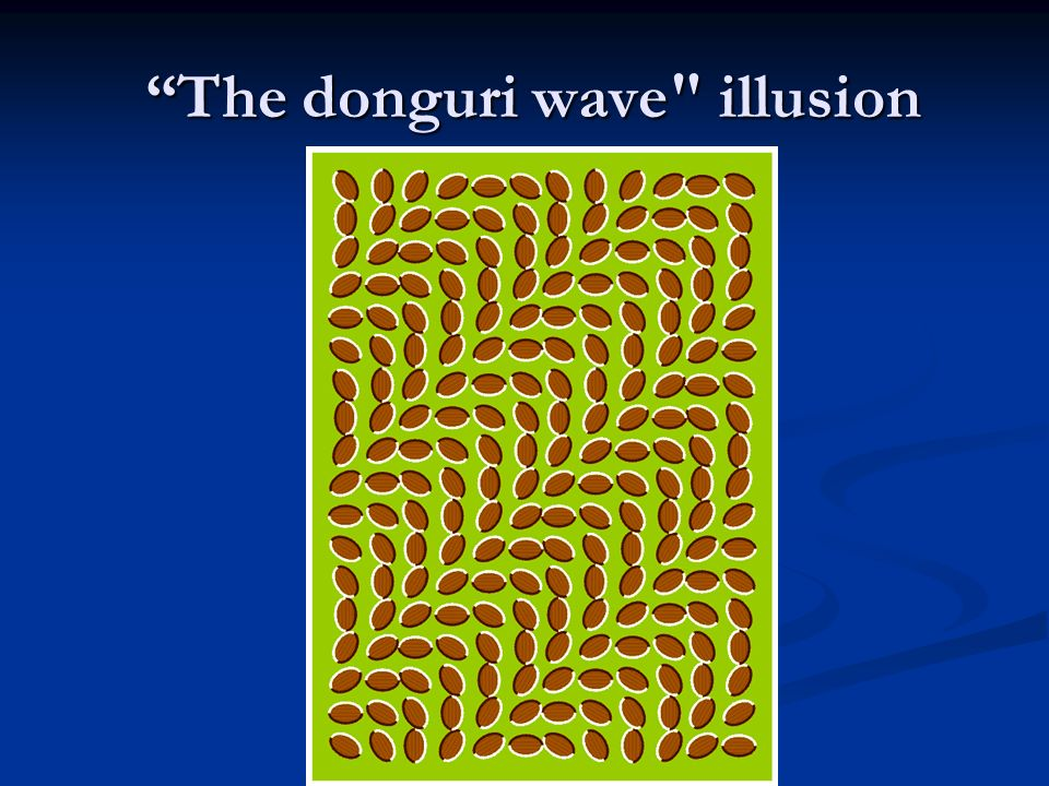 The donguri wave illusion