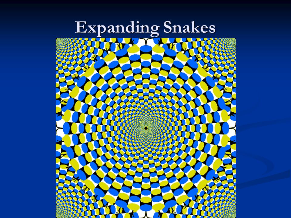 Expanding Snakes