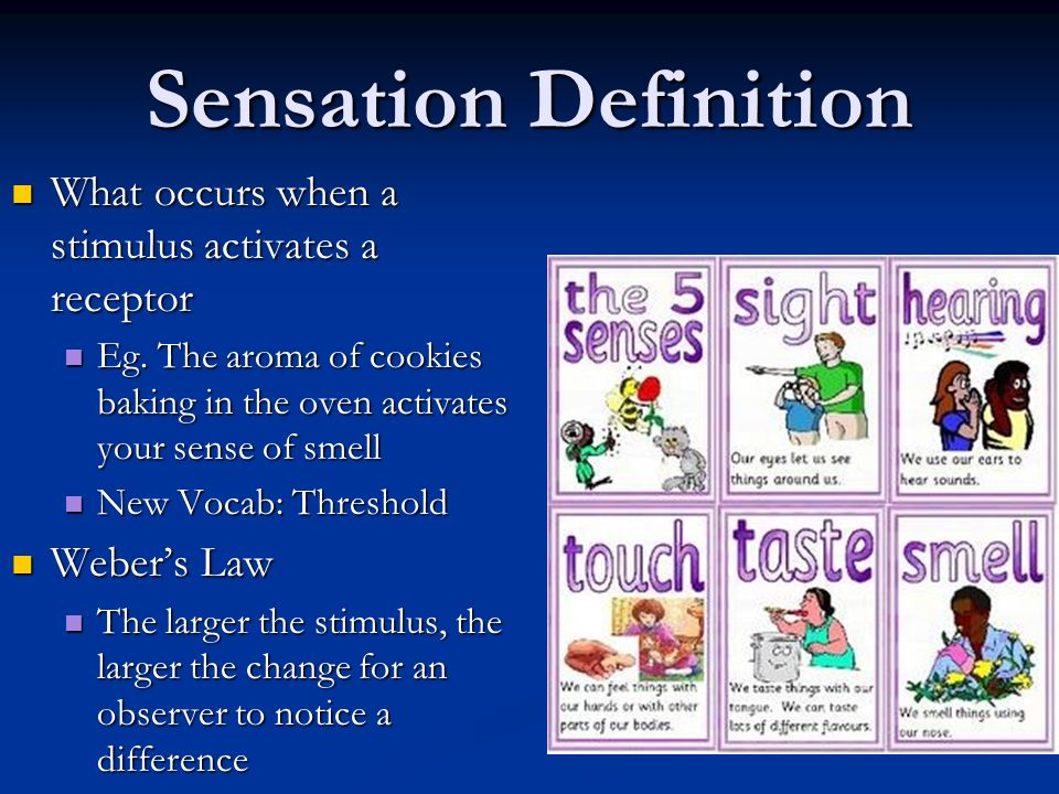 Sensation Definition What occurs when a stimulus activates a receptor