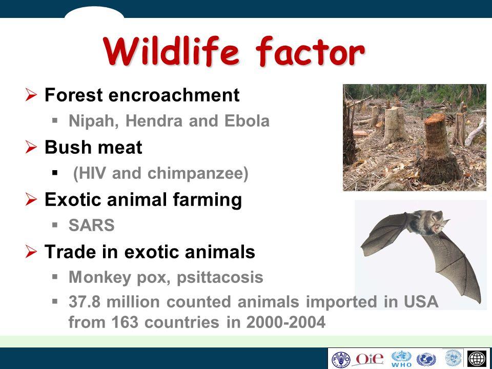 Wildlife factor Forest encroachment Bush meat Exotic animal farming