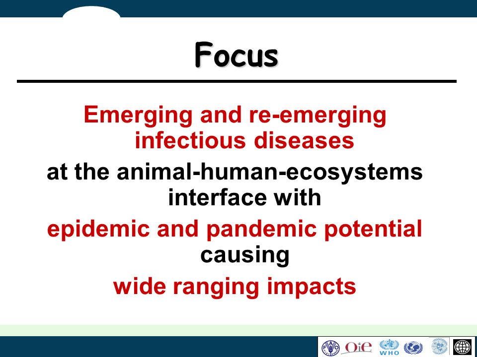 Focus Emerging and re-emerging infectious diseases