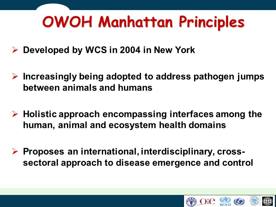 OWOH Manhattan Principles