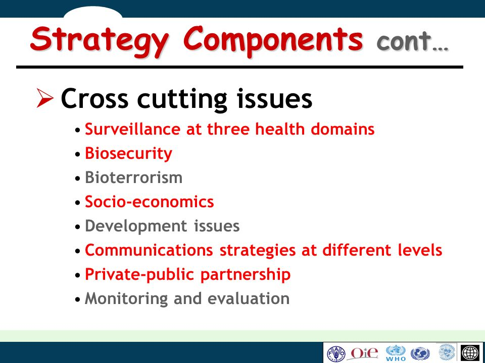 Strategy Components cont…