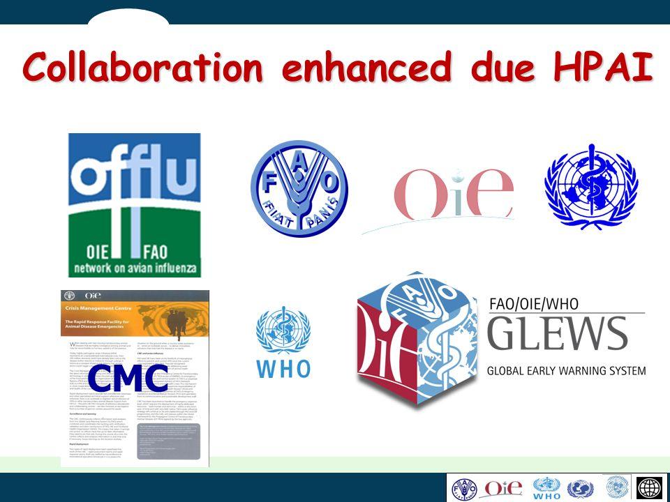 Collaboration enhanced due HPAI