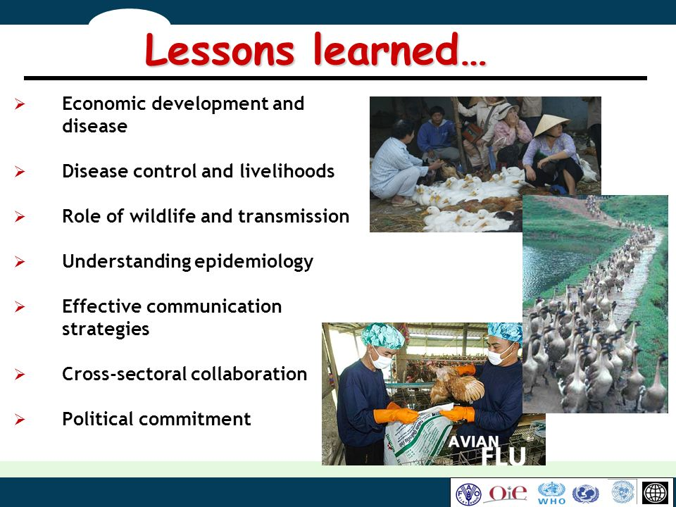 Lessons learned… Economic development and disease
