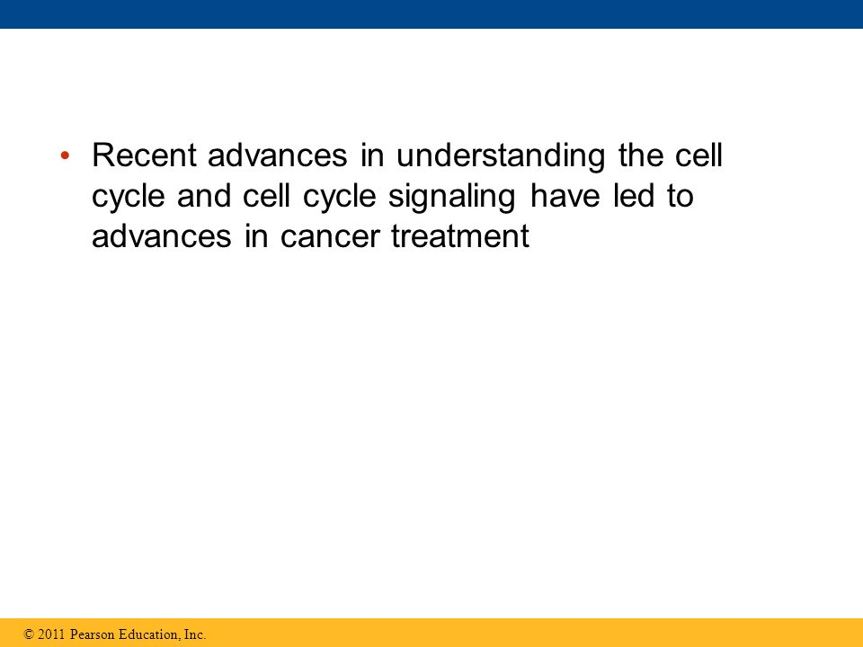 Recent advances in understanding the cell cycle and cell cycle signaling have led to advances in cancer treatment