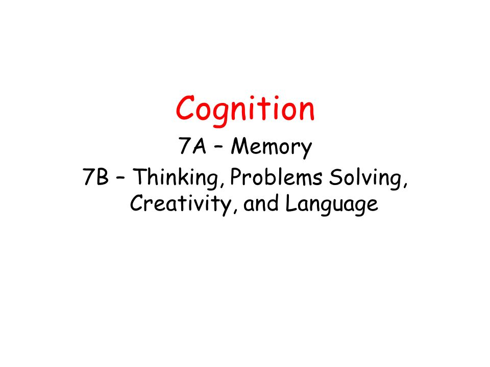 7B – Thinking, Problems Solving, Creativity, and Language