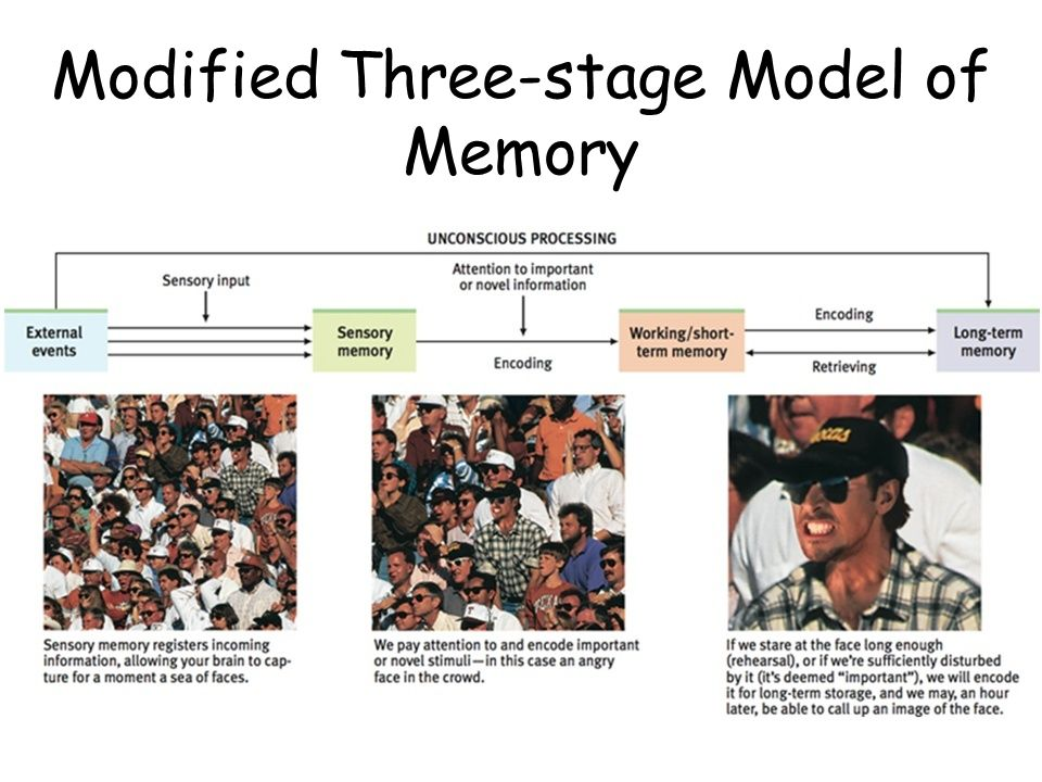 Modified Three-stage Model of Memory