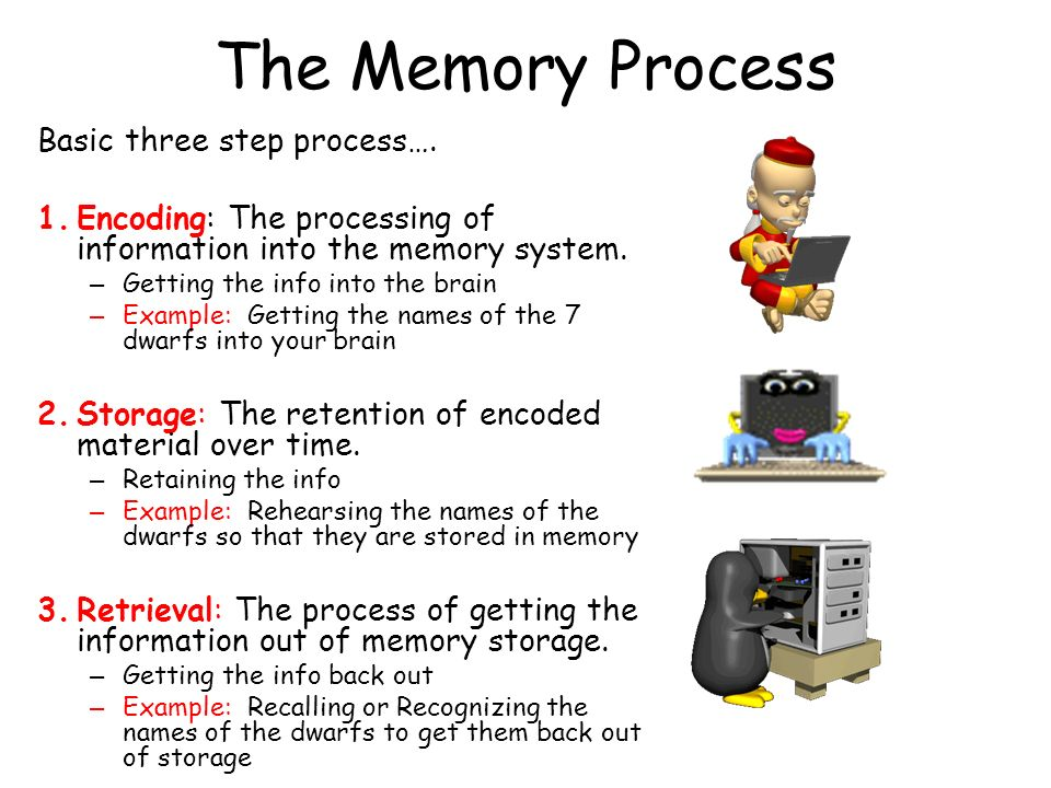 The Memory Process Basic three step process….