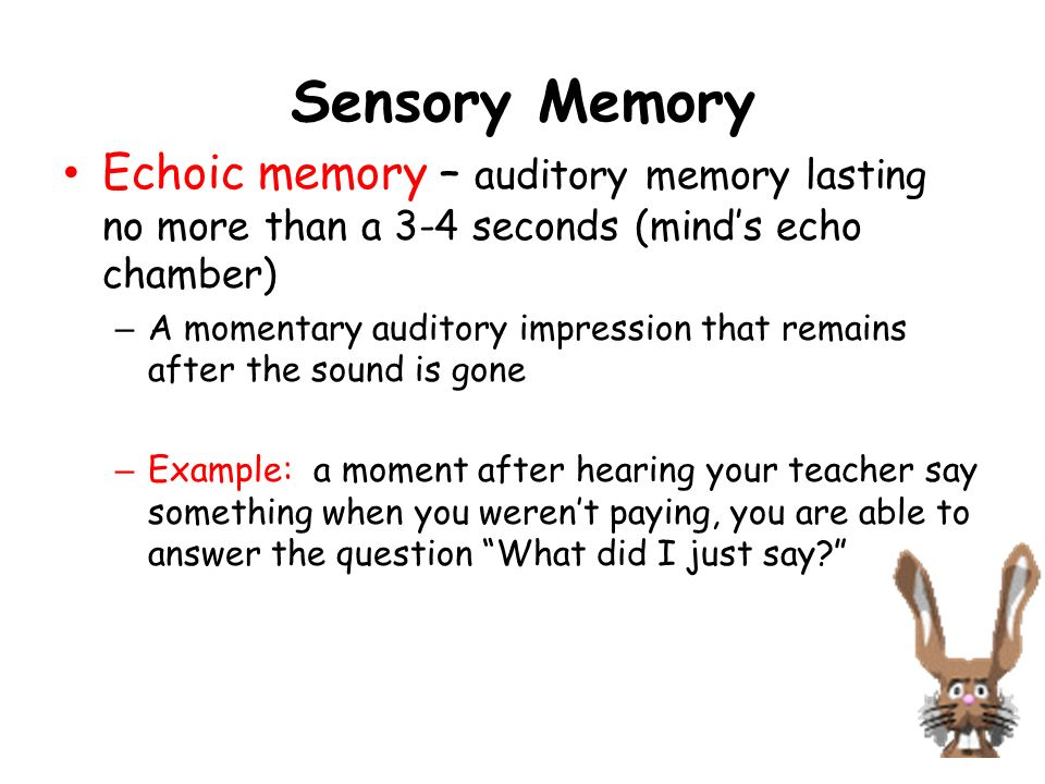 Sensory Memory Echoic memory – auditory memory lasting no more than a 3-4 seconds (mind's echo chamber)