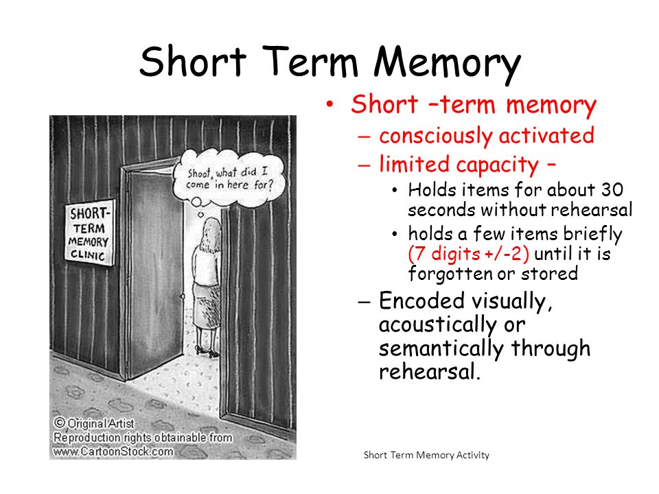 Short Term Memory Short –term memory consciously activated