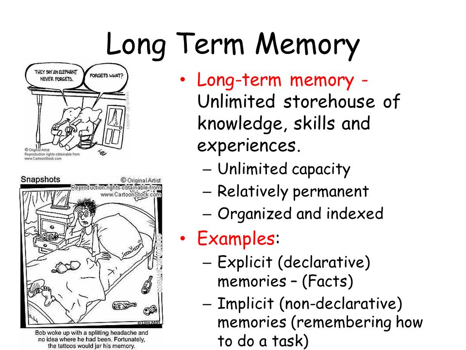 Long Term Memory Long-term memory - Unlimited storehouse of knowledge, skills and experiences. Unlimited capacity.