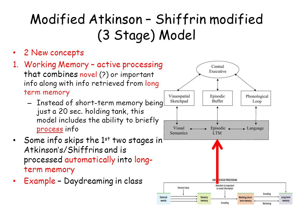 Modified Atkinson – Shiffrin modified (3 Stage) Model