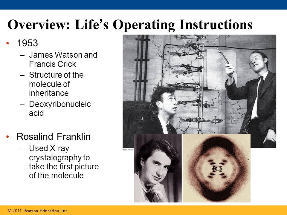 Overview: Life's Operating Instructions