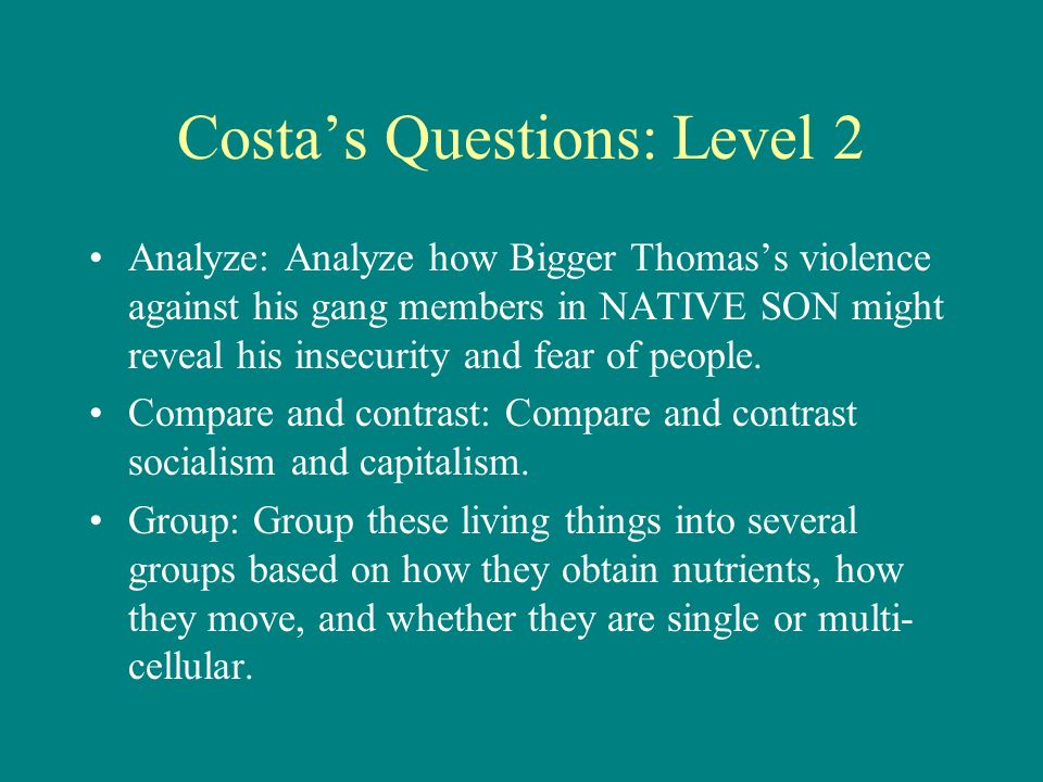 Costa's Questions: Level 2