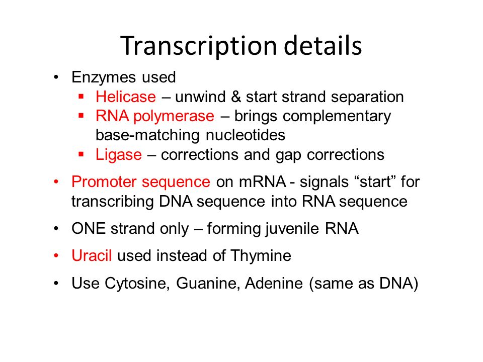 Transcription details