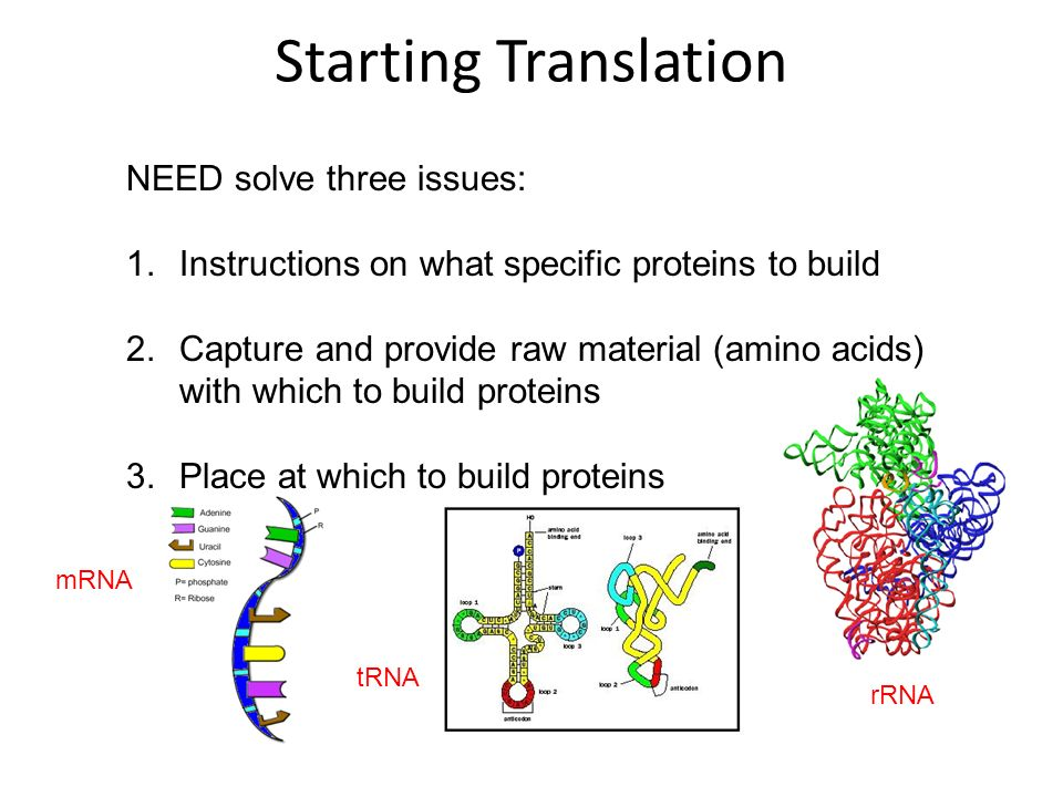 Starting Translation NEED solve three issues: