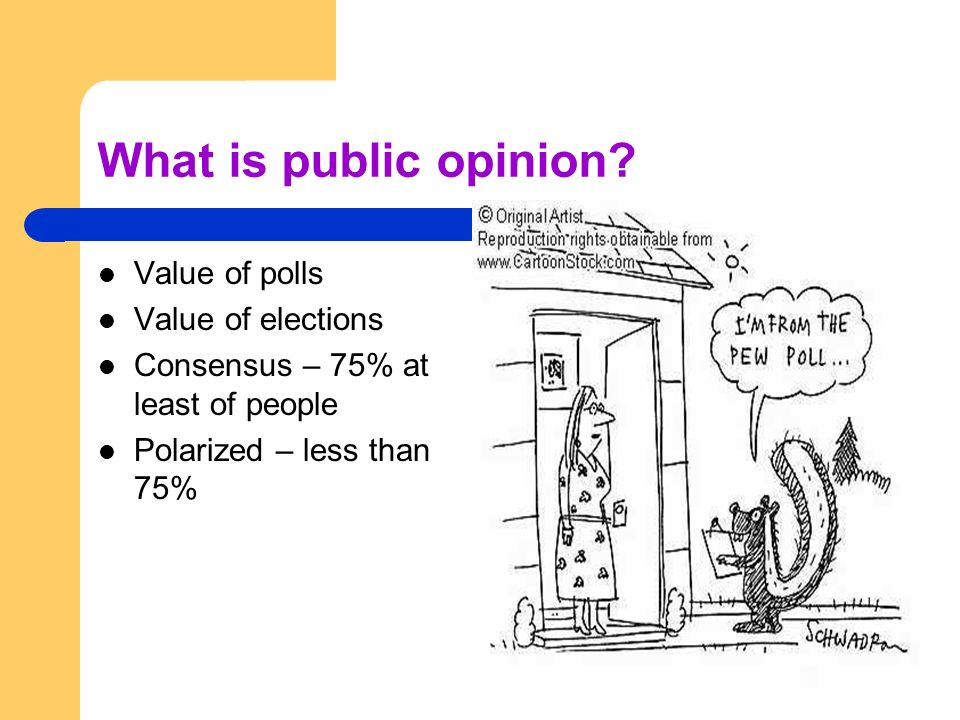 What is public opinion Value of polls Value of elections