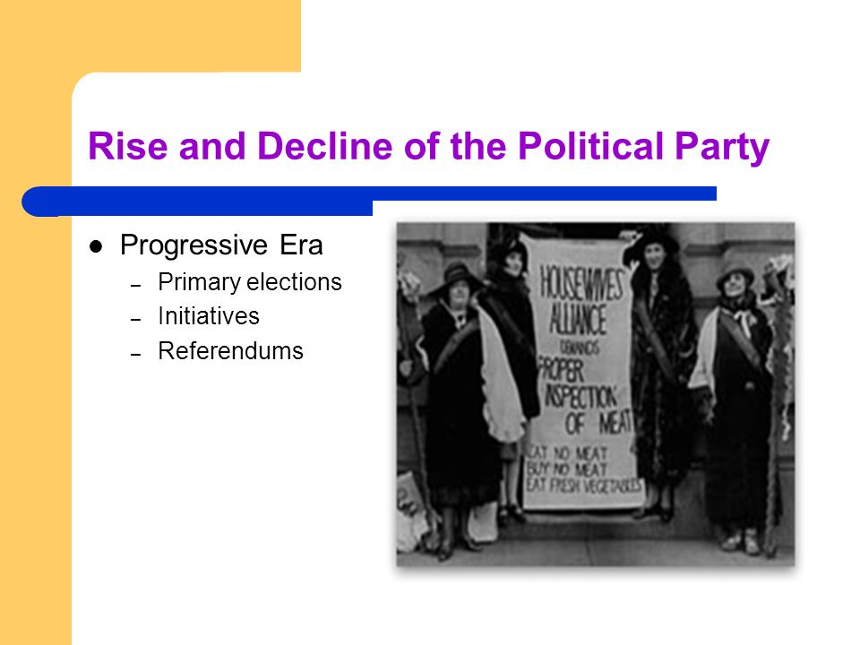 Rise and Decline of the Political Party