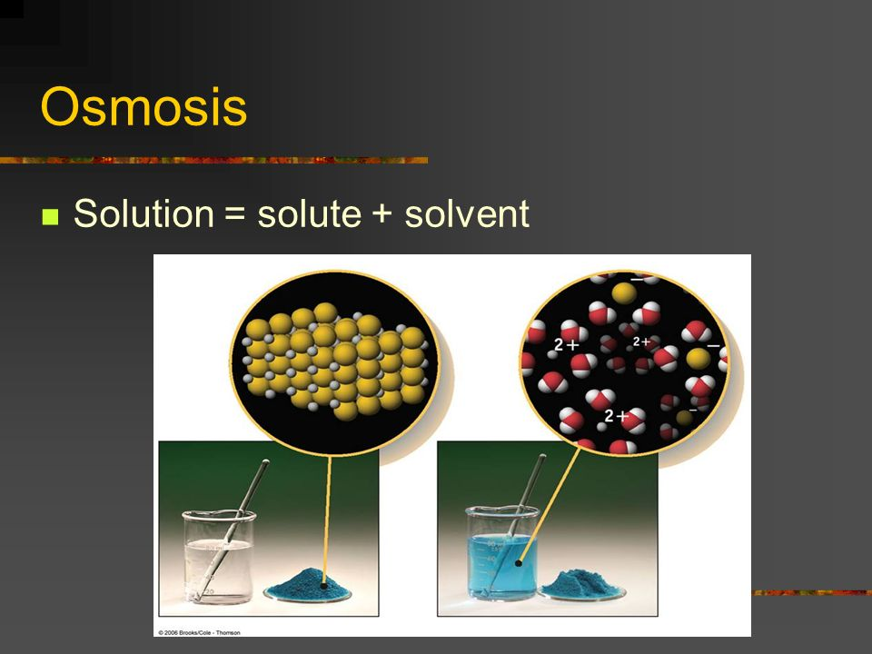Osmosis Solution = solute + solvent