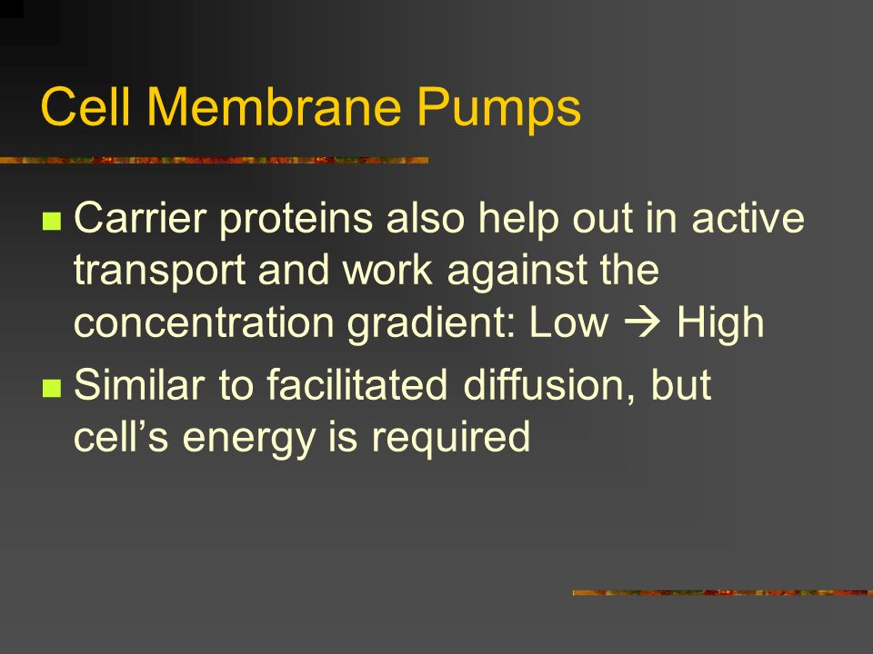 Cell Membrane Pumps Carrier proteins also help out in active transport and work against the concentration gradient: Low  High.