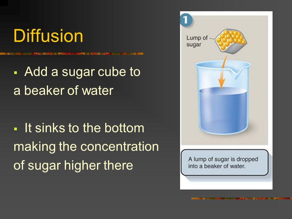 Diffusion Add a sugar cube to a beaker of water It sinks to the bottom