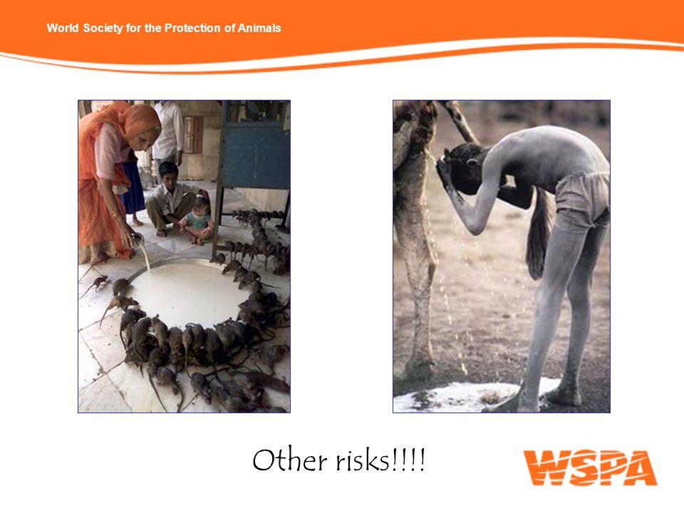 Other risks!!!!