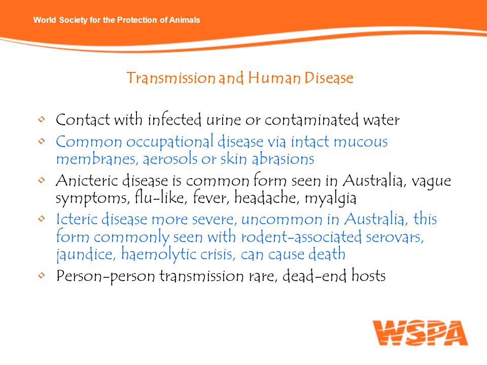 Transmission and Human Disease