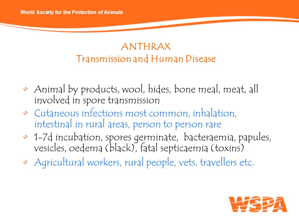 ANTHRAX Transmission and Human Disease