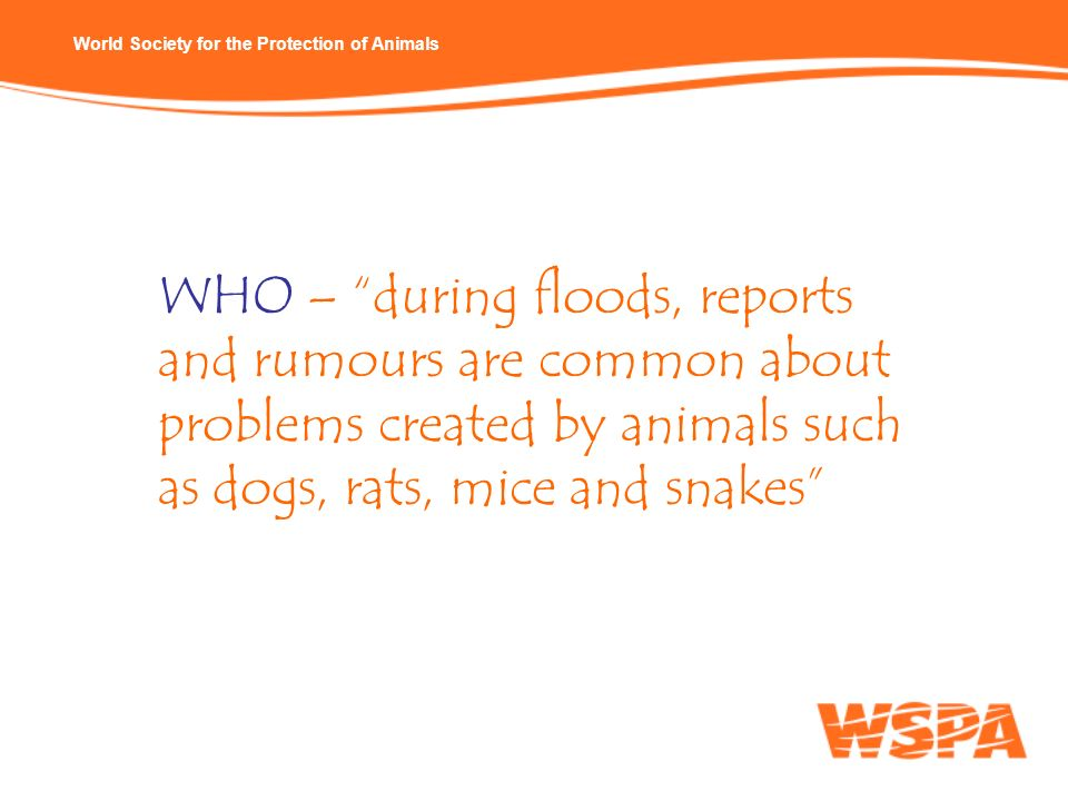 WHO – during floods, reports and rumours are common about problems created by animals such as dogs, rats, mice and snakes