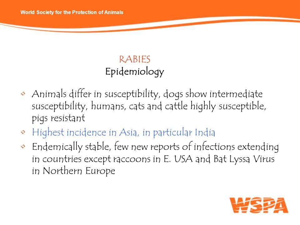 RABIES Epidemiology