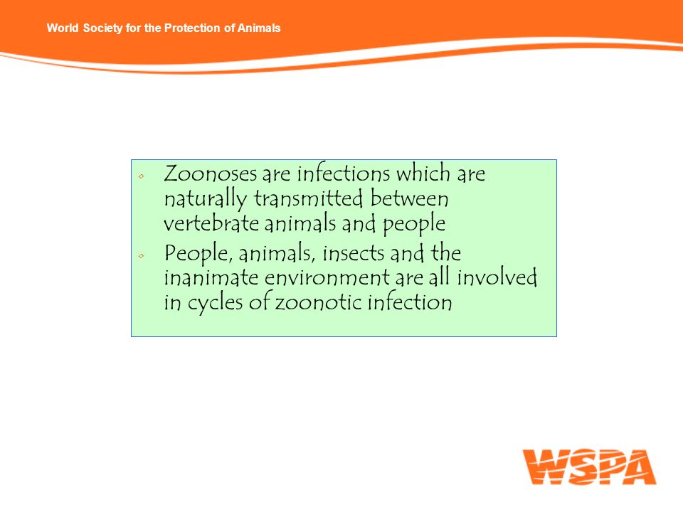 Zoonoses are infections which are naturally transmitted between vertebrate animals and people
