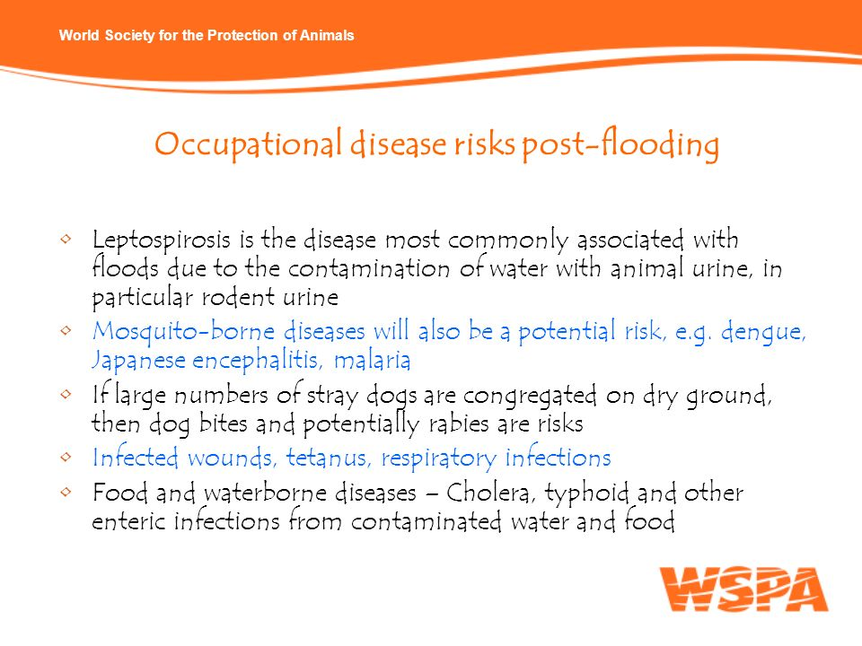 Occupational disease risks post-flooding
