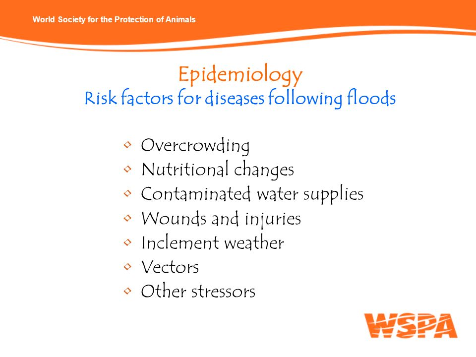 Epidemiology Risk factors for diseases following floods