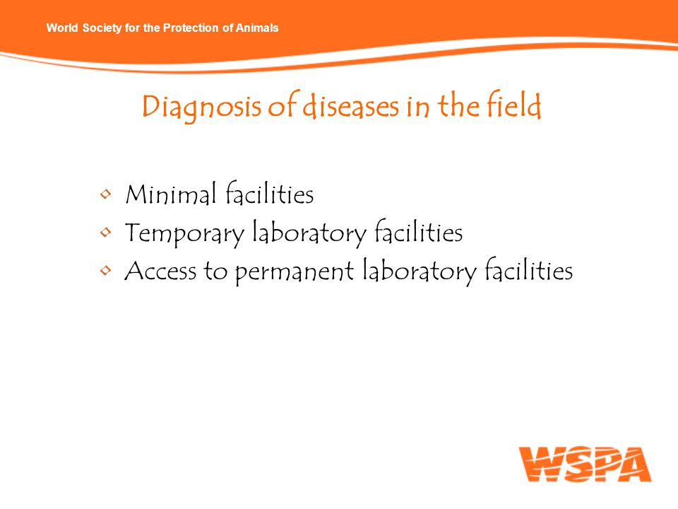 Diagnosis of diseases in the field