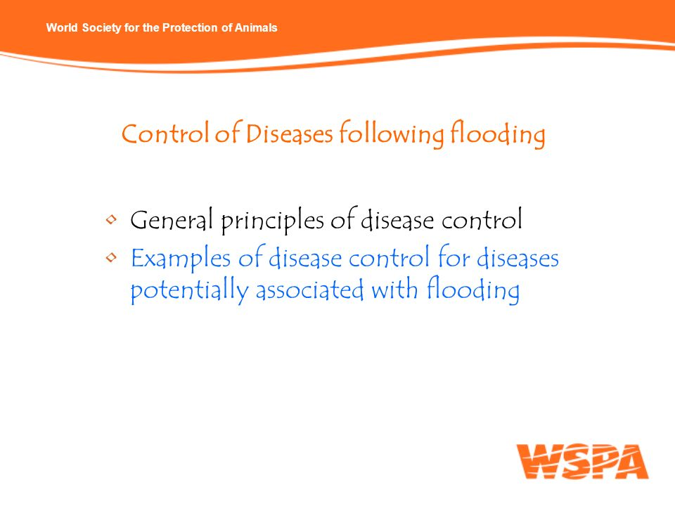 Control of Diseases following flooding