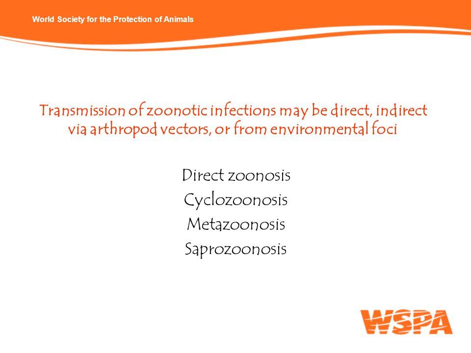 Direct zoonosis Cyclozoonosis Metazoonosis Saprozoonosis