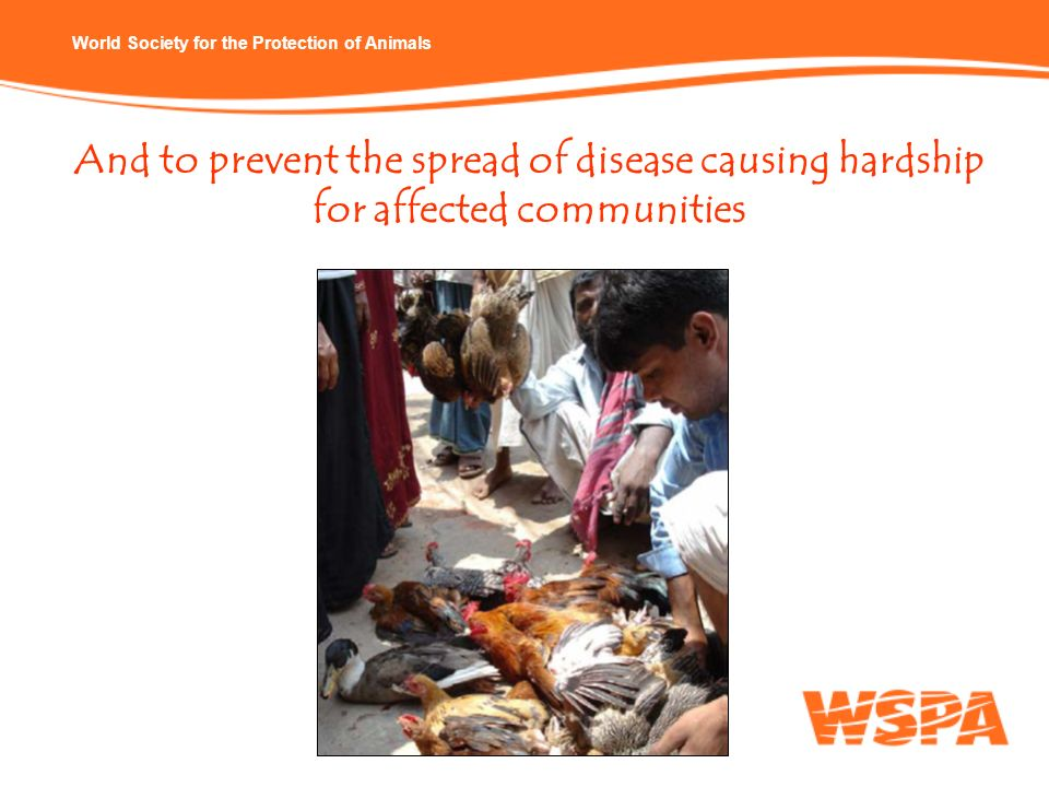 And to prevent the spread of disease causing hardship for affected communities