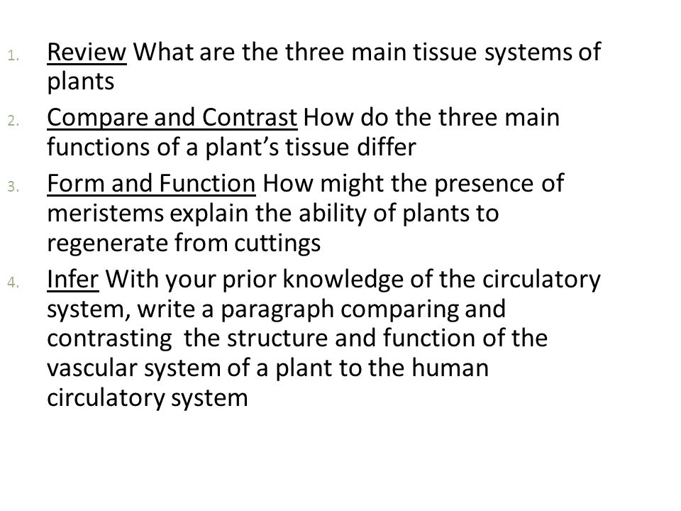 compare the structure and function of Compare the structure and function of loose and dense connective tissue revision  the following is a plain text extract of the pdf sample above, taken from our organisation of the body notes.