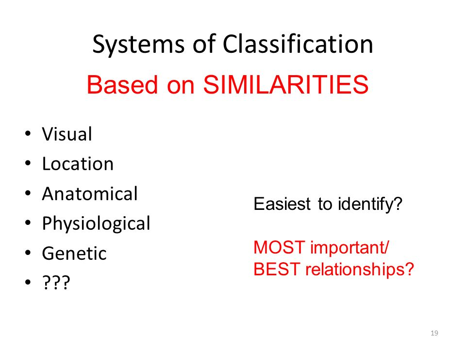 Systems of Classification