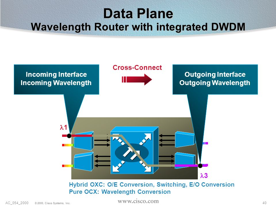 Data Plane Wavelength Router with integrated DWDM