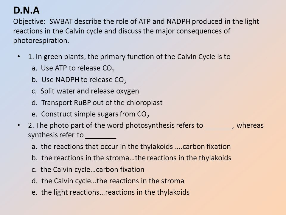 discuss the role of atp in 1 explain the sliding filament theory of contraction 2 describe thin and thick filaments and the function of the associated proteins 3 explain the role of atp in muscle contraction 4 explain the role of the sarcoplasmic reticulum in muscle contraction and relaxation 5 describe excitation-contraction coupling 6.