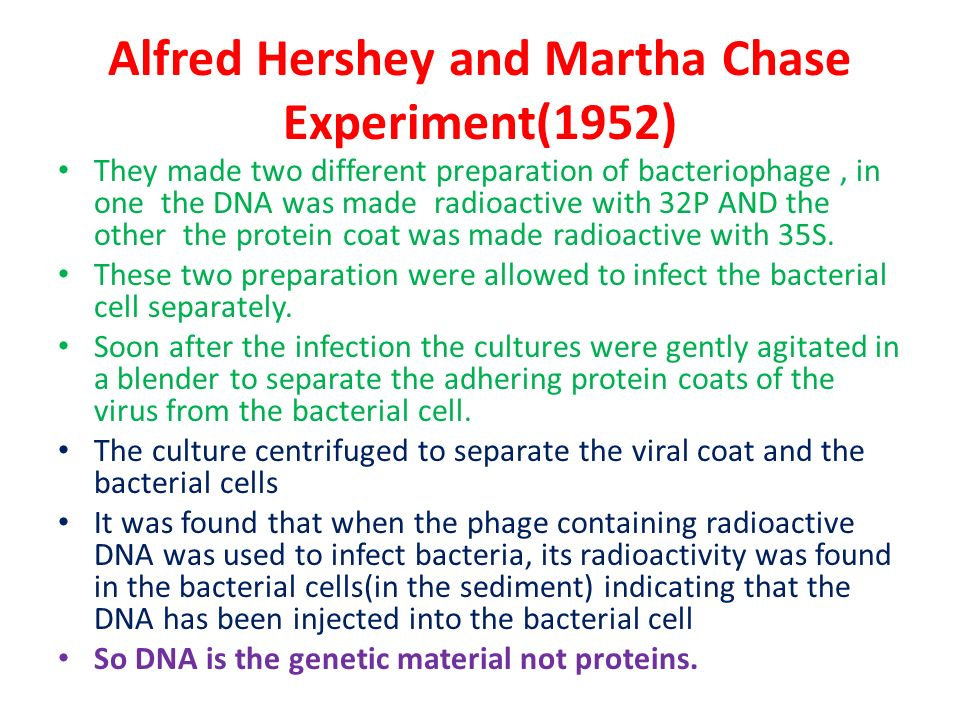hershey and chase experiment pdf