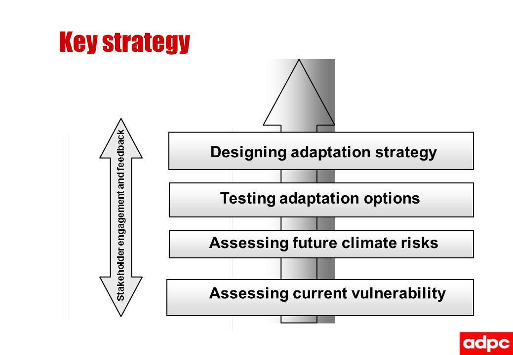 Designing adaptation strategy